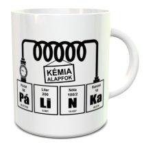 Pálinka bögre kémia alapfok