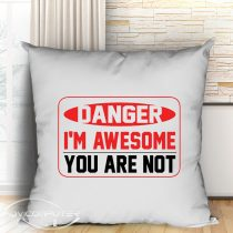 Danger i'm awesome you are not párna