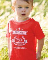 Szülinapi póló a legjobb tesónak gyerek póló