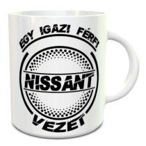 Nissanos bögre